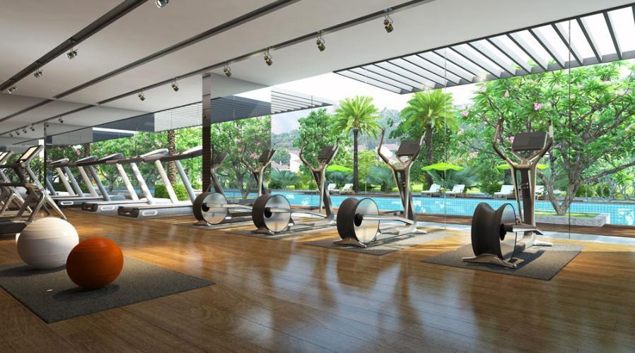 Gym dự án căn hộ Feliz En Vista